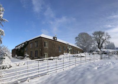 Front view in snow